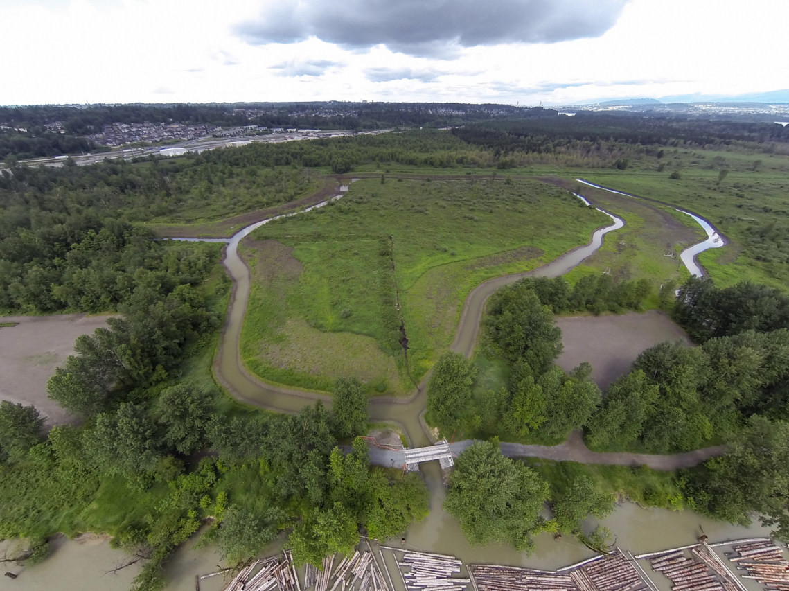 New 860-acre protected regional park opens in Metro Vancouver this weekend (PHOTOS)