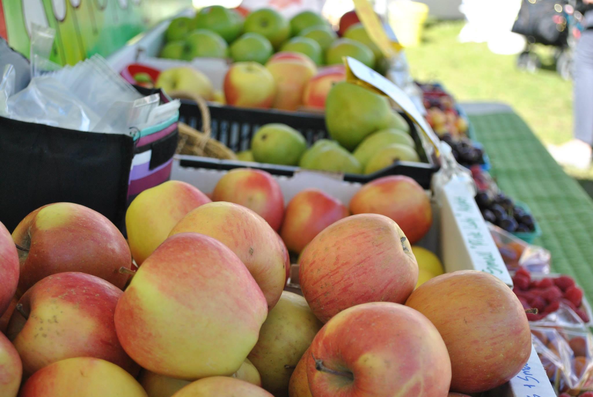 Bridgeland Riverside Farmers' Market opens June 23