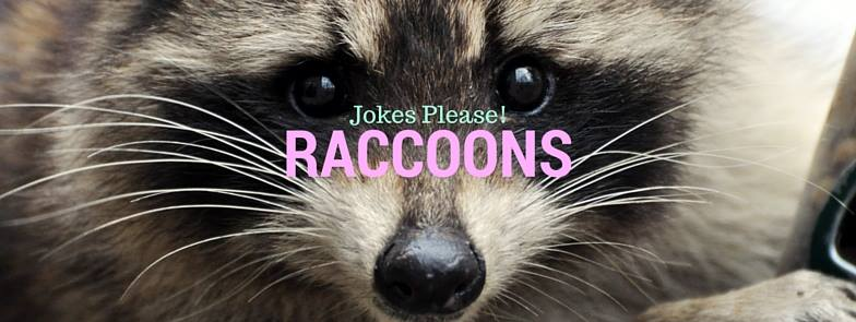 Jokes Please / Facebook