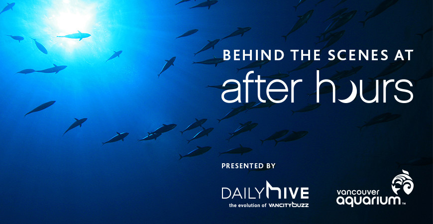 Go behind the scenes at Vancouver Aquarium's After Hours (CONTEST)