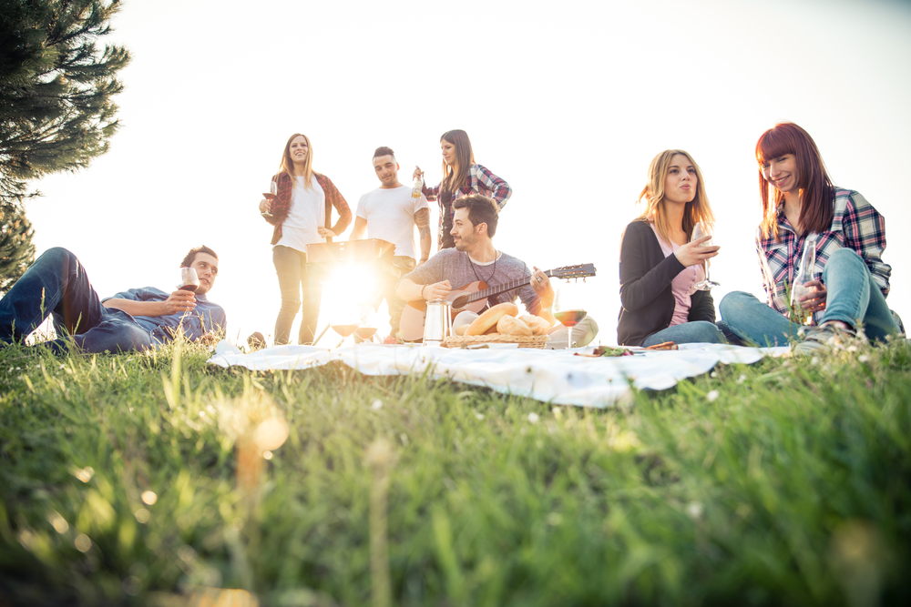 Everything you need to know about Montreal's picnic law