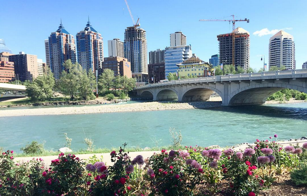 17 things to do in Calgary this weekend: June 10 to 12