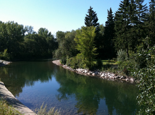 Stanley Park - Calgary / Charmaine Warne