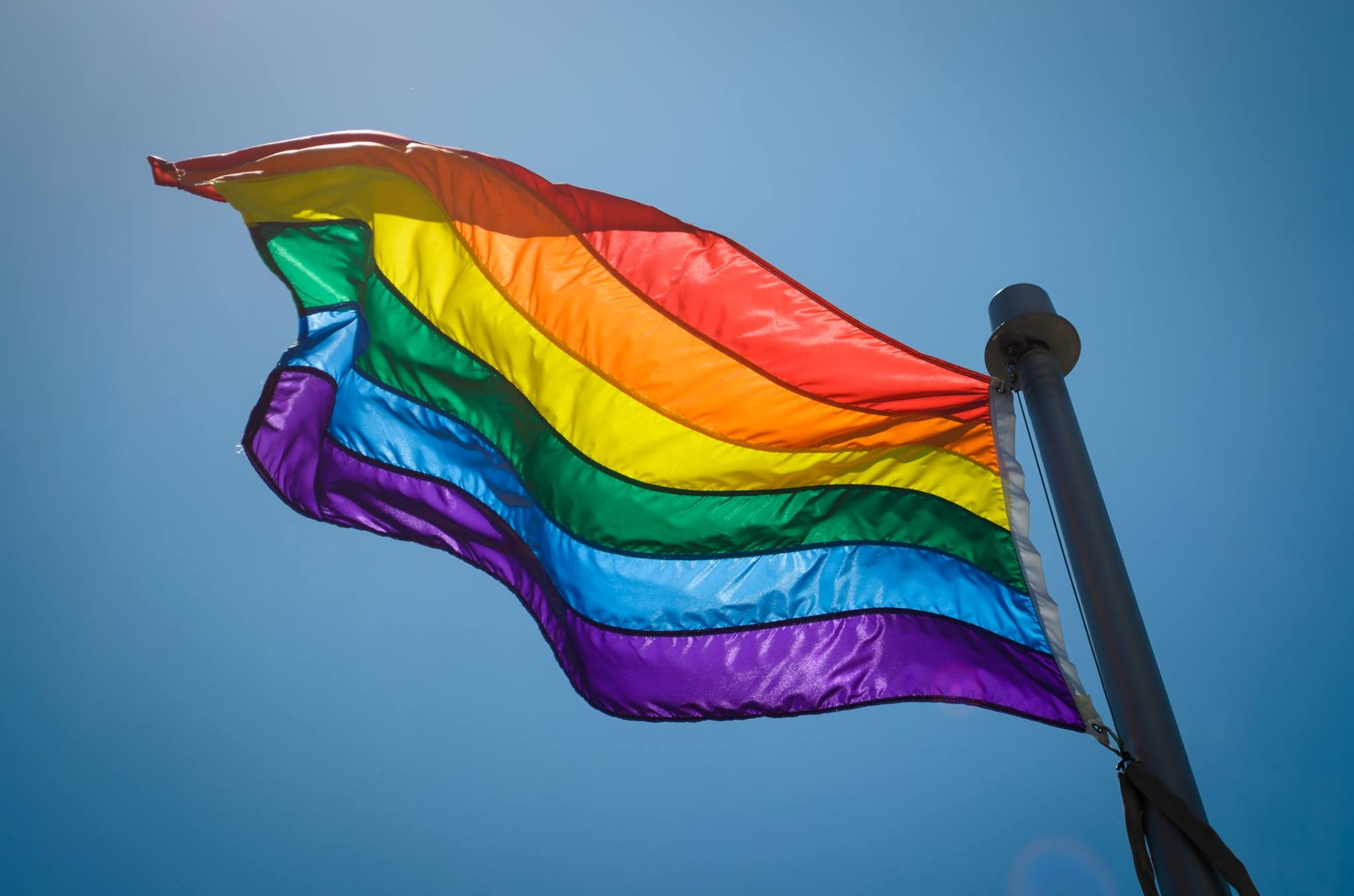 Why everyone should participate in Pride Month this year