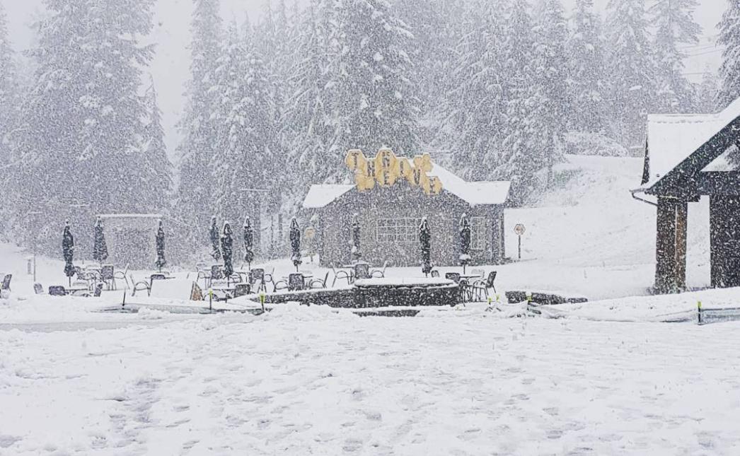 Grouse mountain snow summer