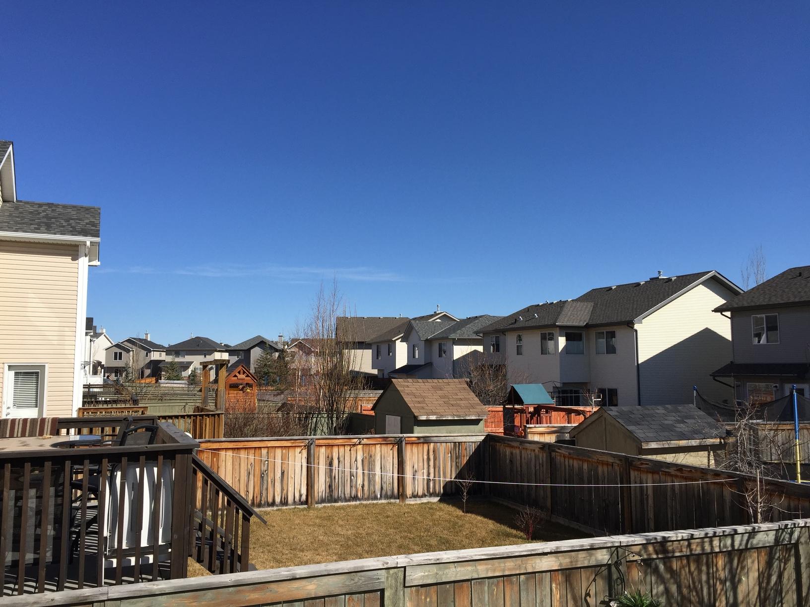 Growing tips for gardening in Calgary