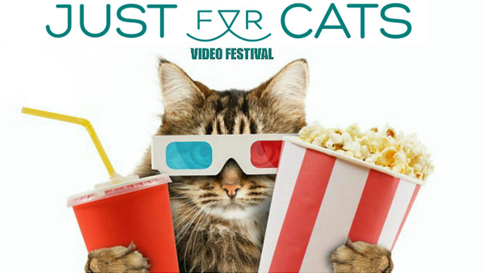 Just For Cats Festival