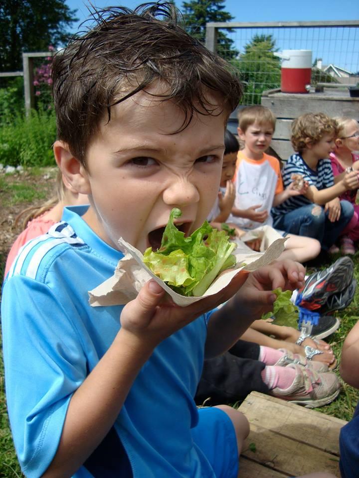 Edible Garden Project/Facebook