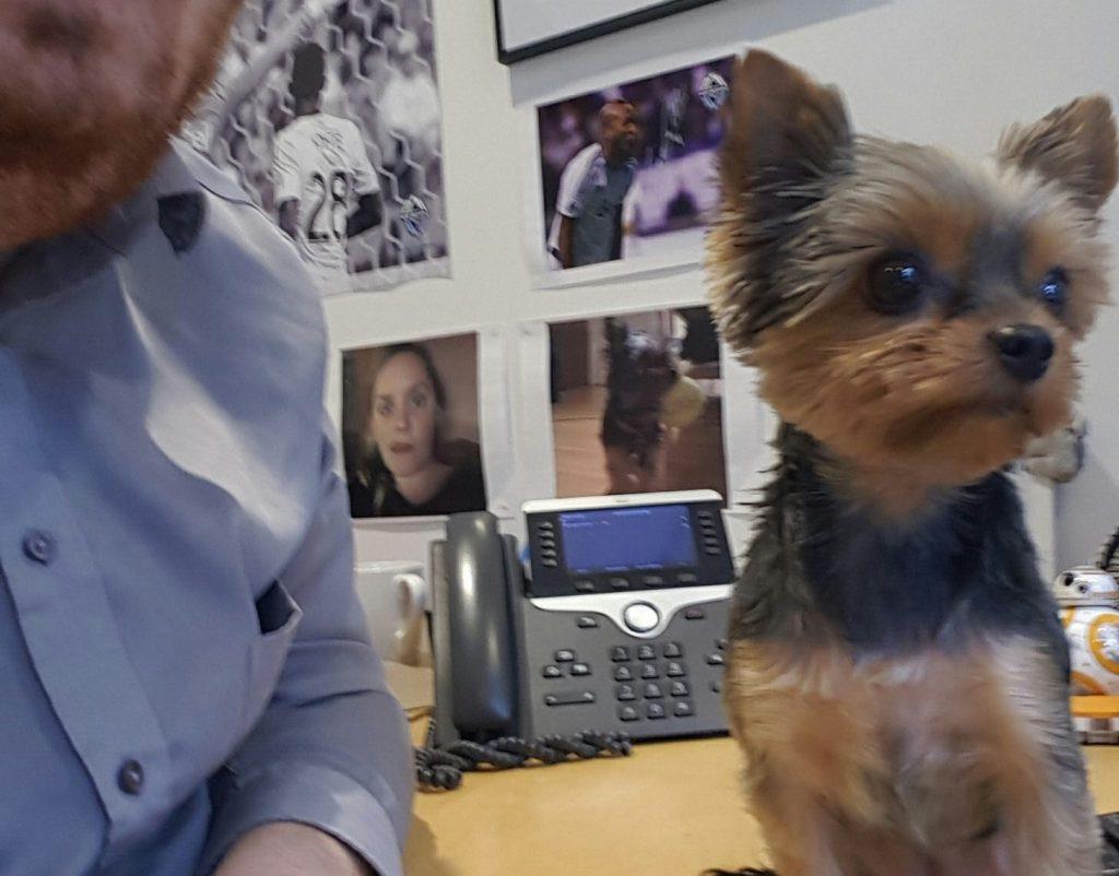 Ryan Jarman and his dog Chloe