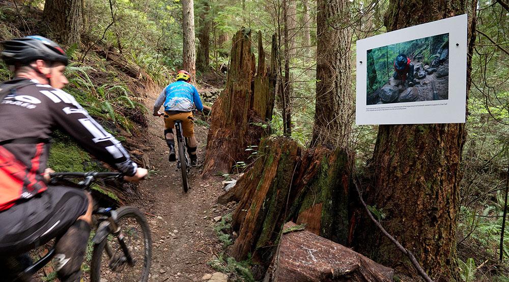 New North Shore trail art reveals secret world of trail builders (PHOTOS)