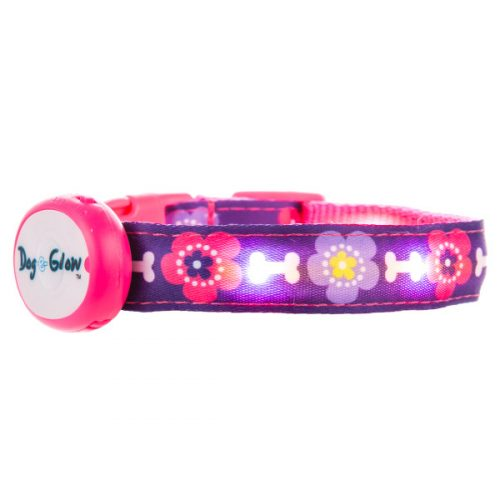 Top Paw Dog-E-Glow LED Flower Power Dog Collar $4.97 PetSmart
