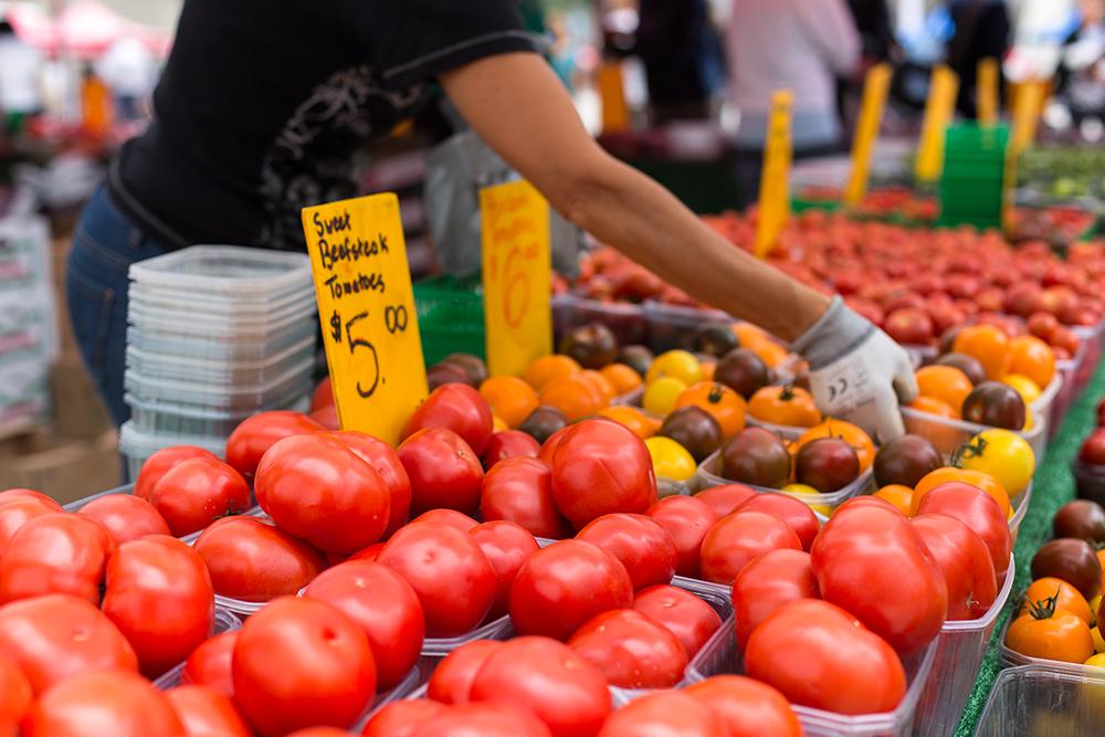 Fw tomatoes 3
