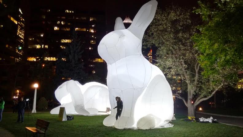 Giant bunnies invade Calgary