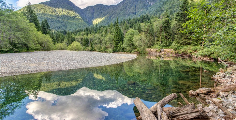 29 hikes to do in your neighbourhood in Metro Vancouver
