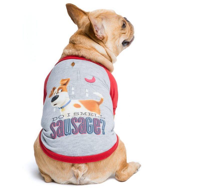 Max the Sausage Secret Life of Pets shirt (PetSmart).