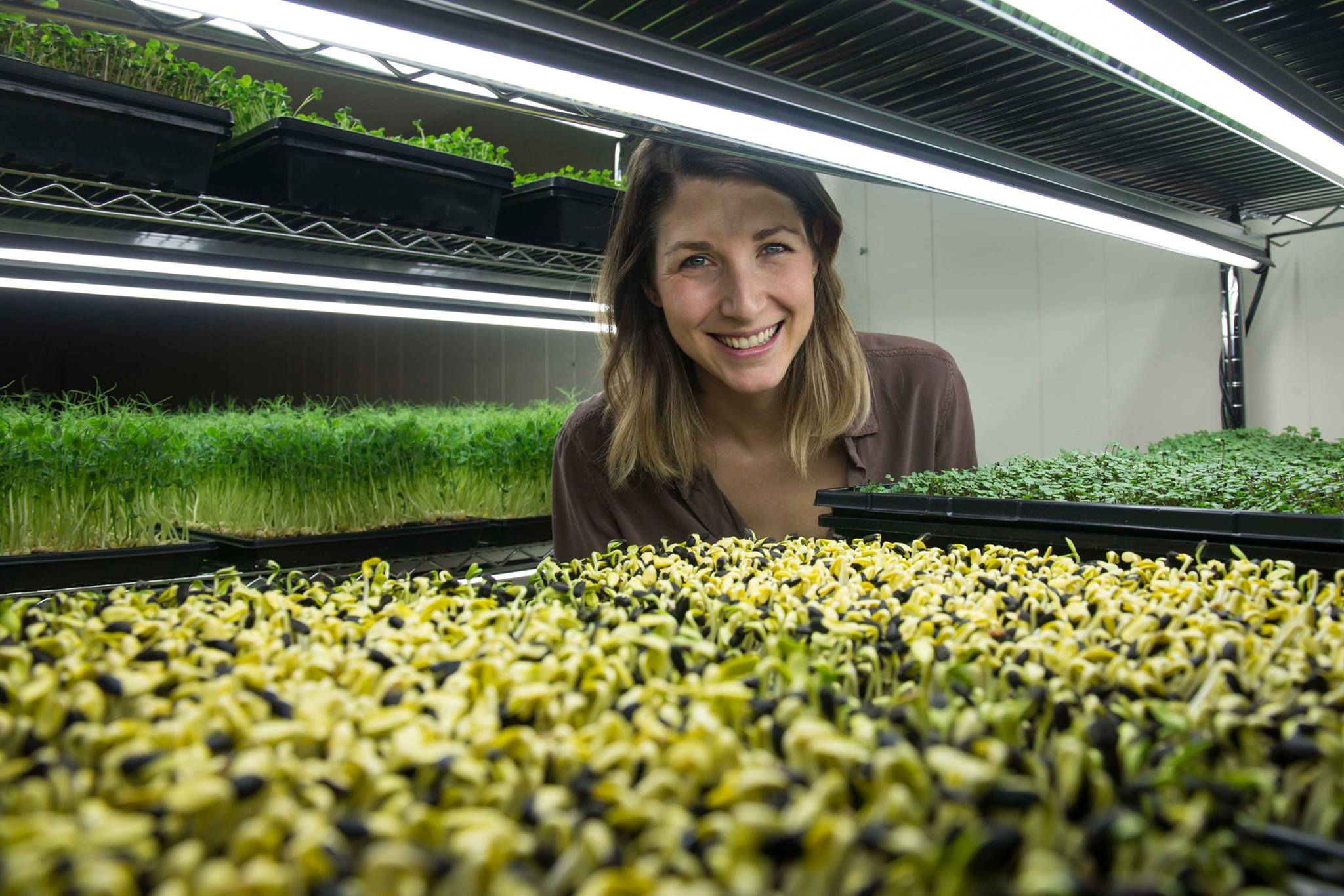 Urban farm collective YYC Growers looking to expand through crowdfunding