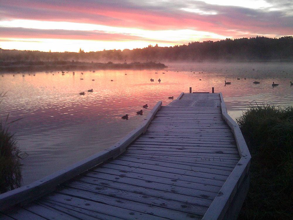Burnaby Lake (Leesamlong/Flickr)