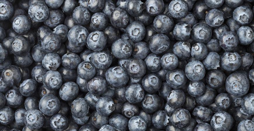Blueberries shutterstock