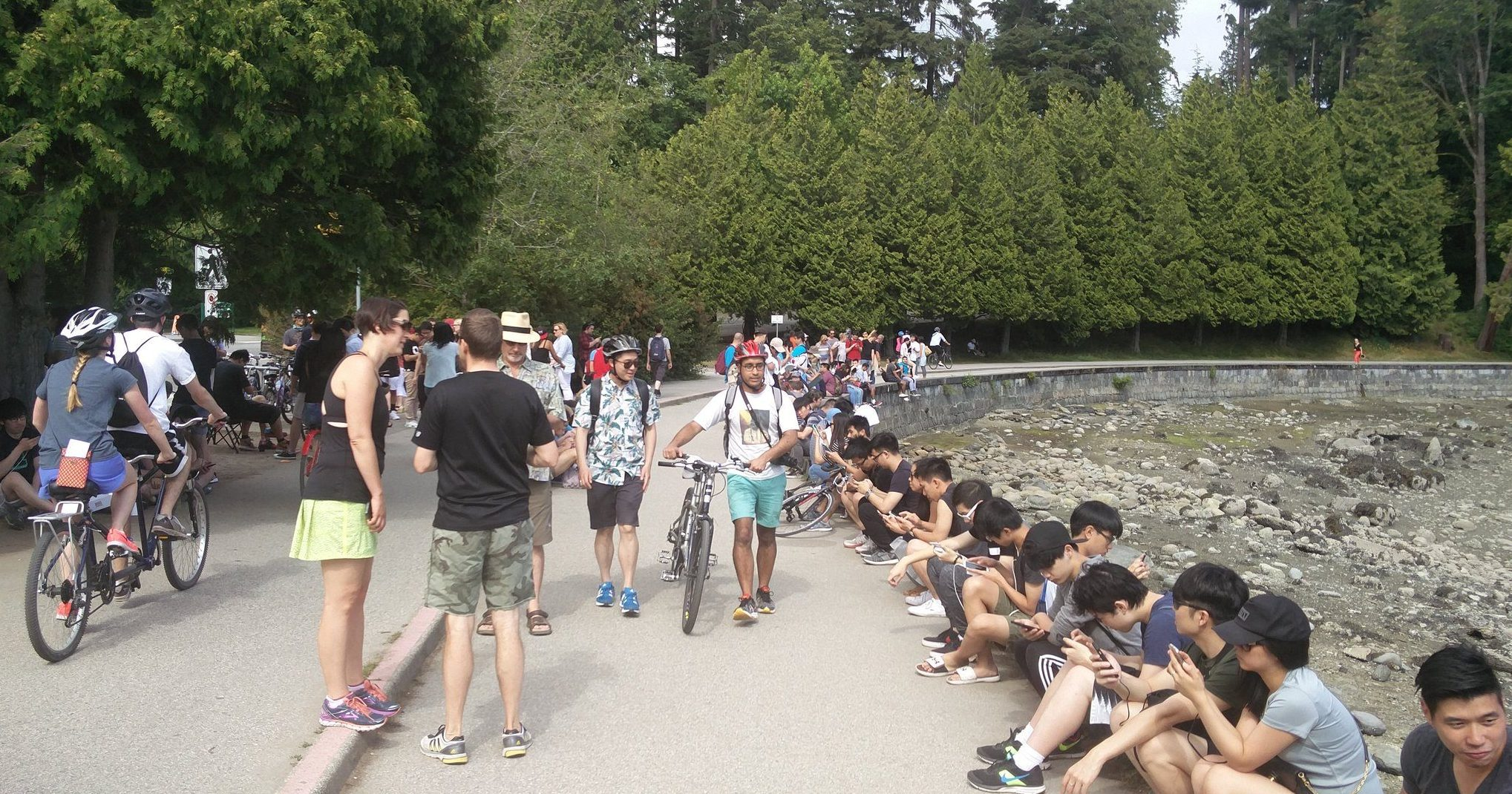Cancelled Pokémon GO event still attracts hundreds to Stanley Park [PHOTOS]
