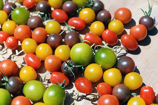 Houweling's Tomatoes (Jess Fleming/Daily Hive)