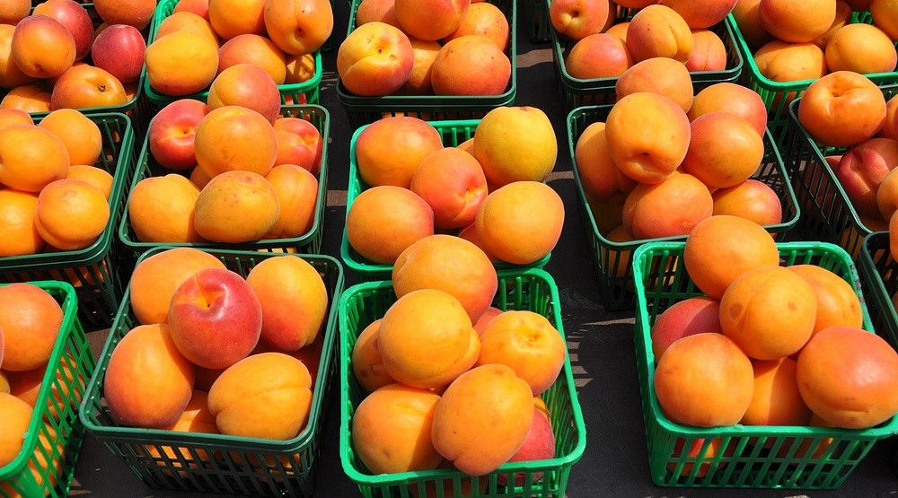 Peaches recalled across Canada due to potential Salmonella contamination