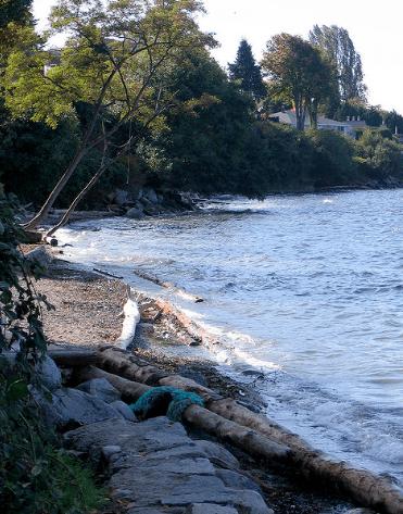 Kitsilano Beach Park / David Withers