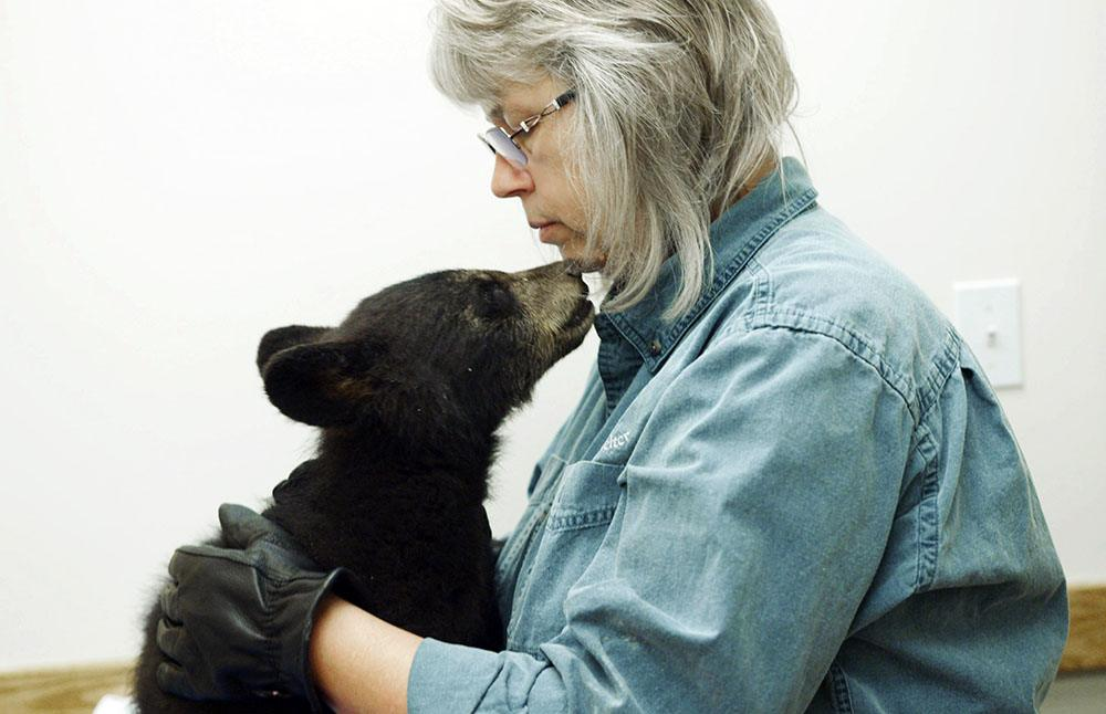 Northern Lights Wildlife Shelter manager and co-founder Angelika Langen comforts an orphan black bear cub at the vet's office. (Nick Quenville/Omnifilm Entertainment)