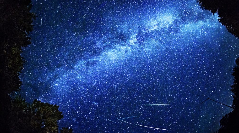 Perseid meteor activity (Shutterstock)