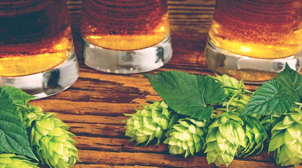 Hops beer shutterstock