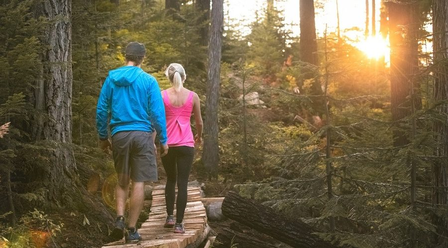 Challenging new uphill hiking trails open at Blackcomb Mountain