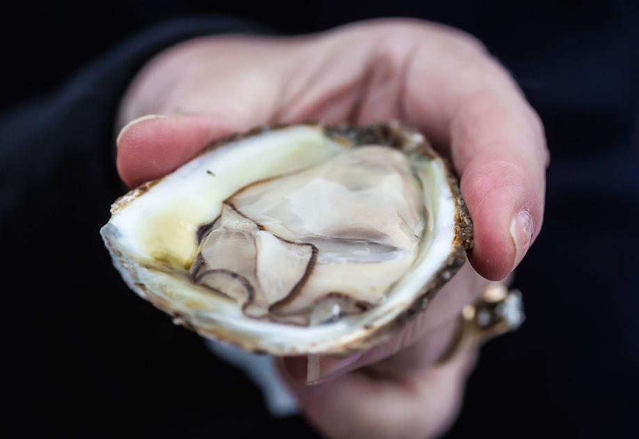 PEI Oyster/Shutterstock