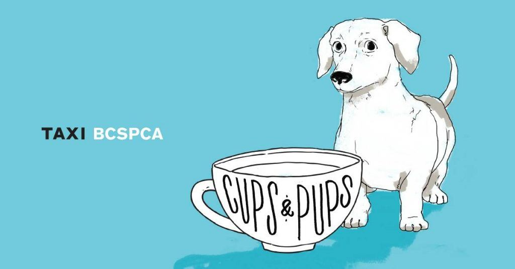 Cups with pups