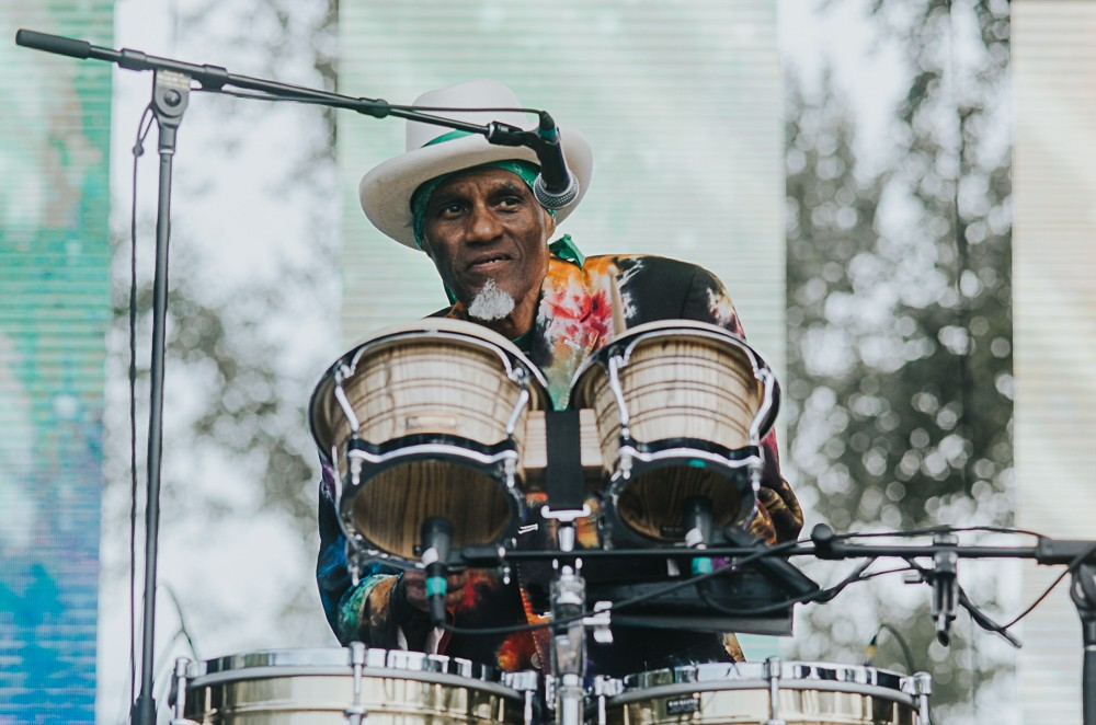 3_Cyril_Neville_Blues_And_Roots_2016_Tim-Nguyen (7 of 19)