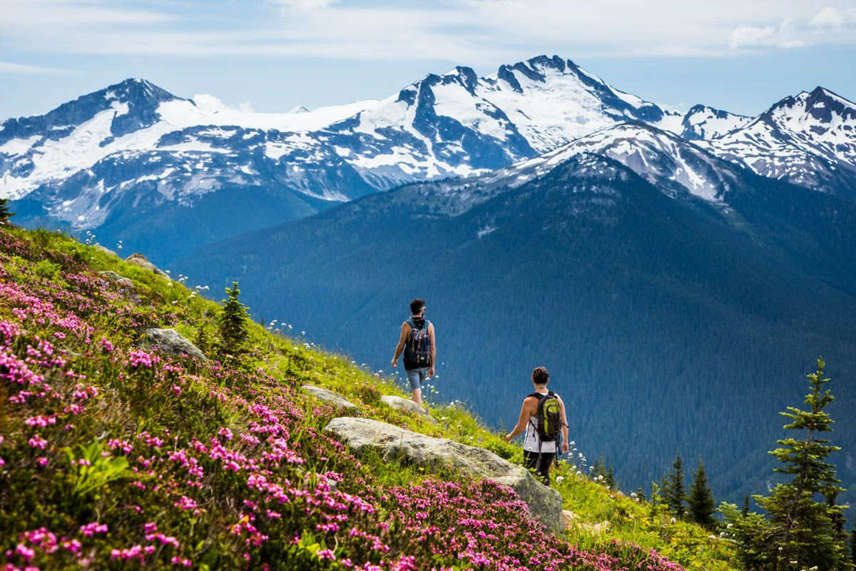 There are more than 50 km of hikes on Whistler and Blackcomb mountains (Whistler Blackcomb)