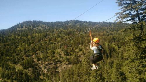 Image: ZipZone Adventure Park
