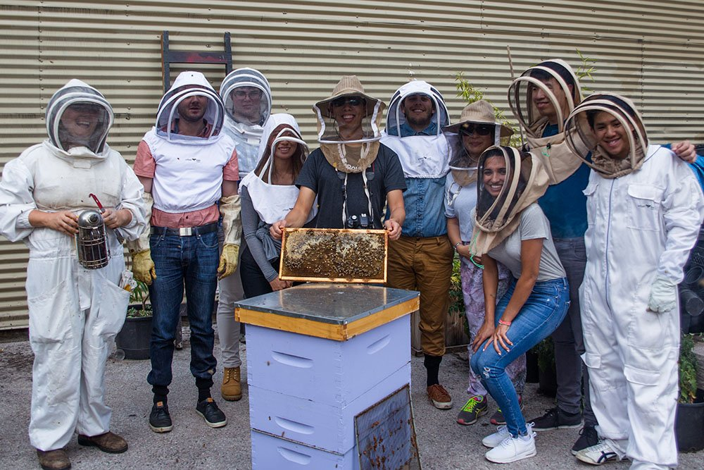 The Routific team beekeeping with Hives For Humanity (Routific)