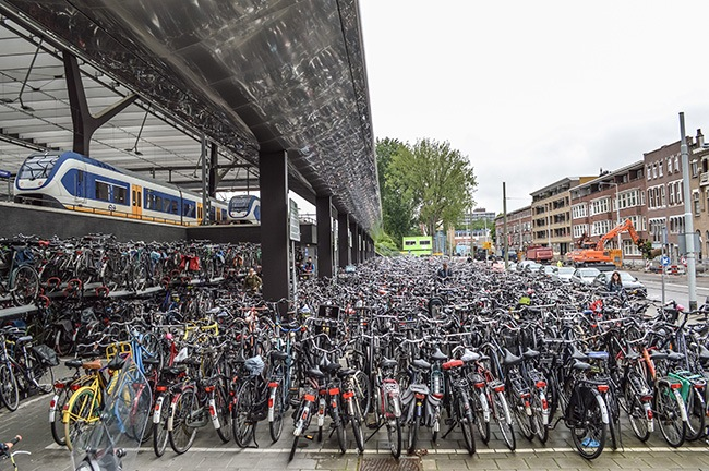 75 Years After Its Destruction Rotterdam Continues To
