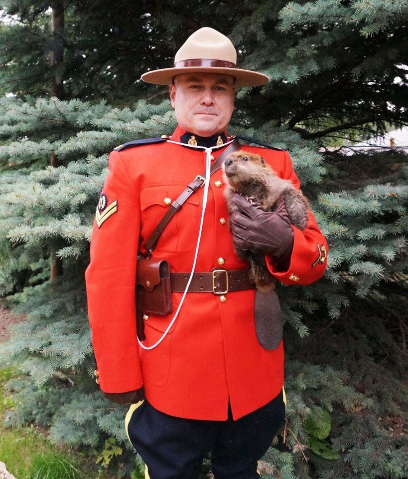 Mountie and Beaver