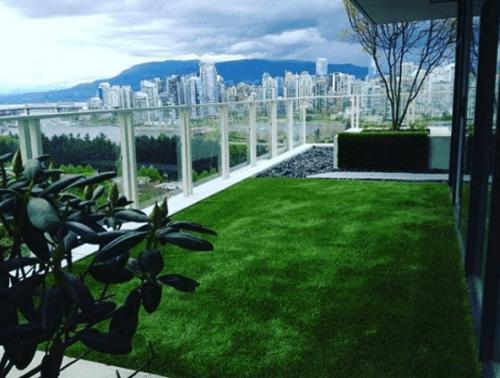 FG Lawns