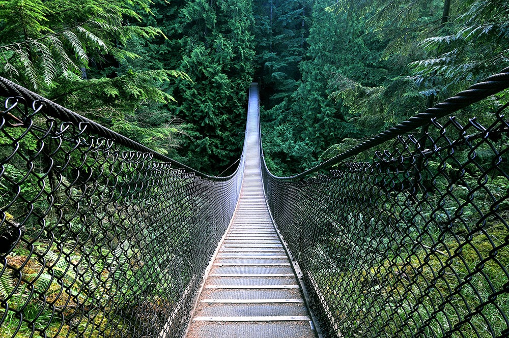 Lynn Canyon suspension bridge (Xuanlu Wang/Shutterstock)