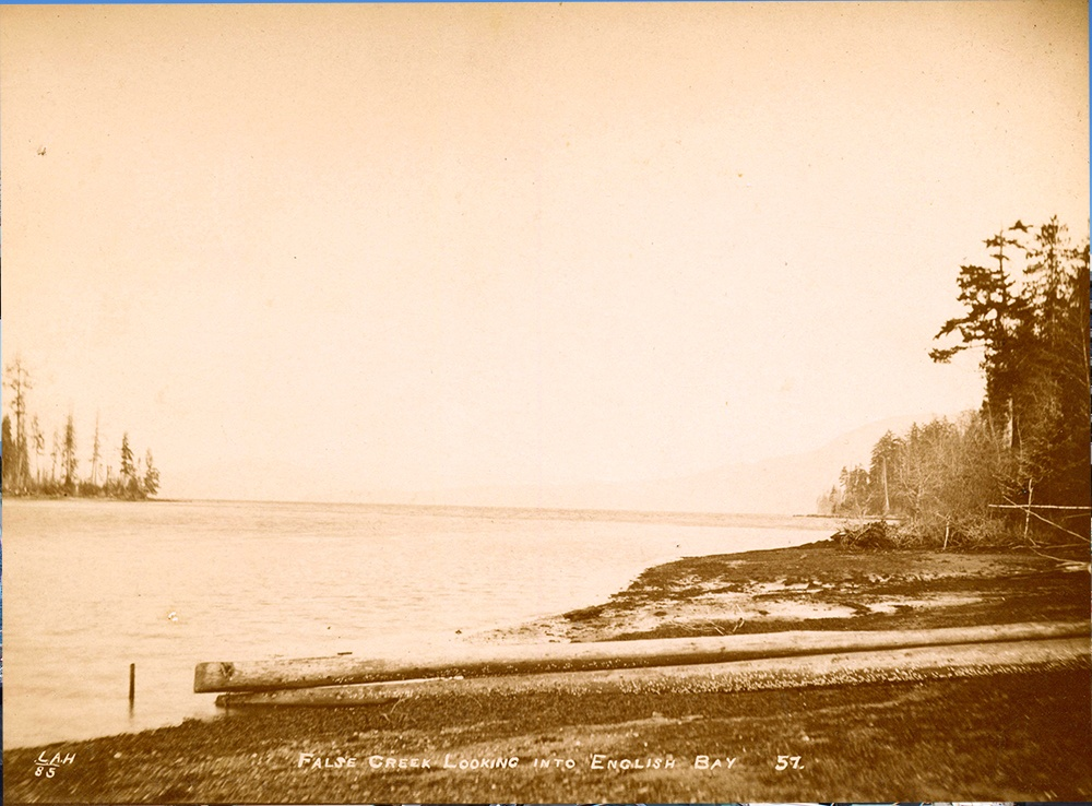 1885: A view looking out into English Bay from False Creek before any development had begun. (Vancouver Archives)