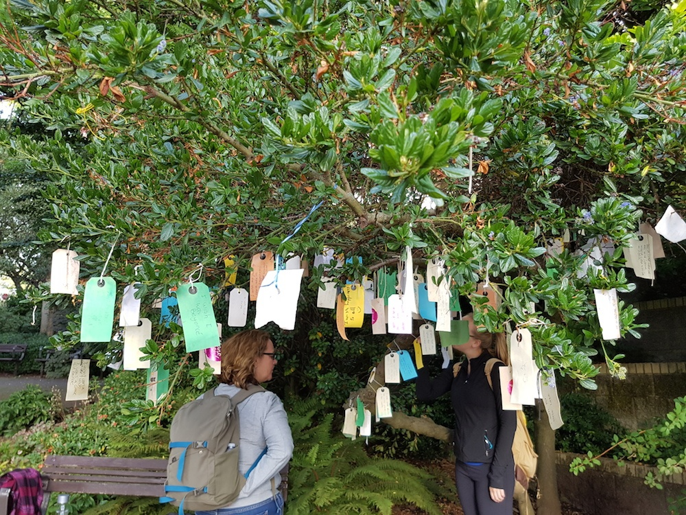 Vancouver wishing tree 1