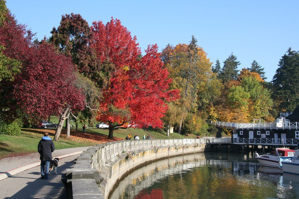 Fall on the Stanley Park Seawall (Ben Allen/Flickr)
