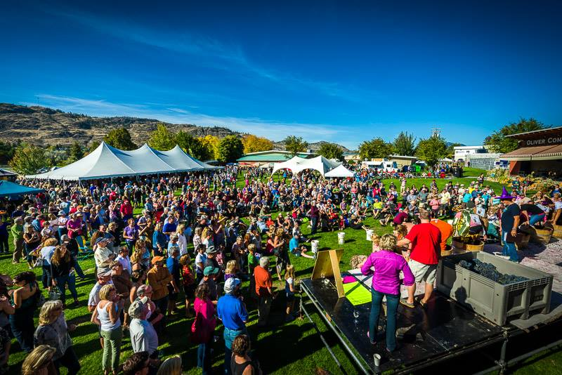 Festival of the Grape - Oliver, BC/Facebook