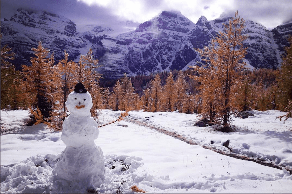 Snow took over Lake Louise and Banff on a Tuesday! (PHOTOS)