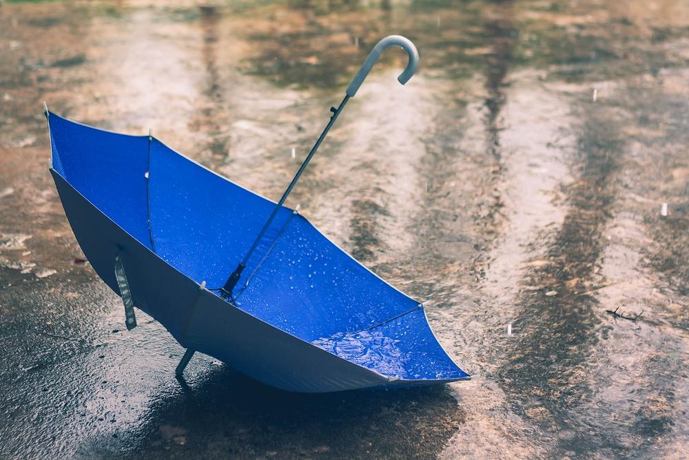 Umbrella / Shutterstock