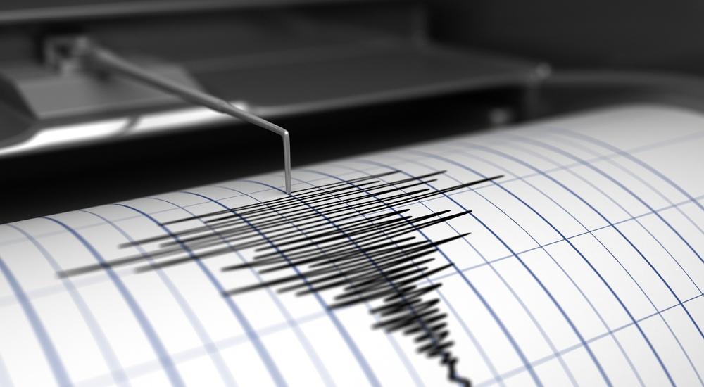 Earthquake seismograph 2