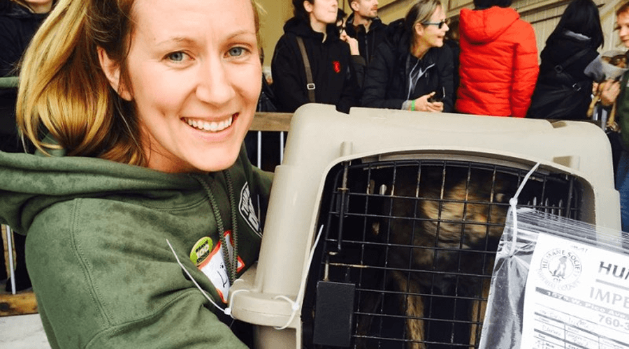 60 rescue dogs getting flight path to Vancouver
