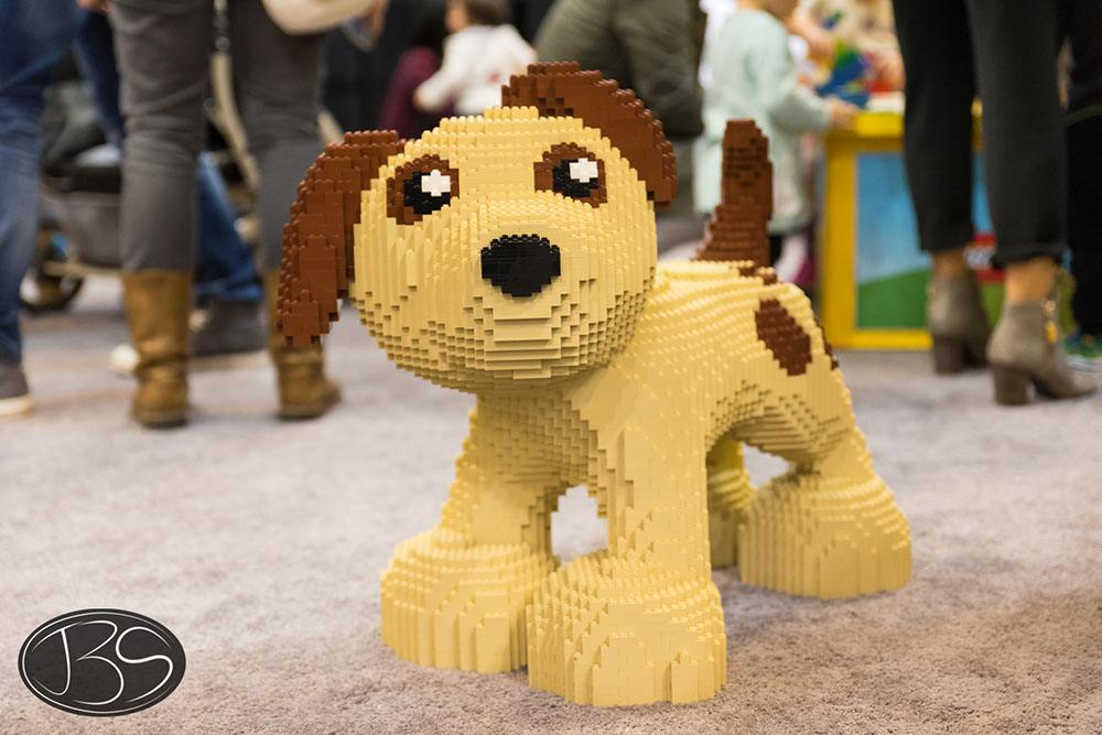 Dog at the LEGO Imagine Nation Tour in Vancouver (Justin Siu)