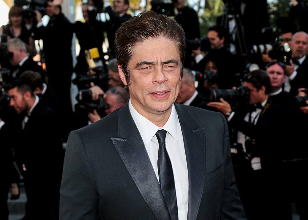 Benicio del Toro (magicinfoto/Shutterstock)